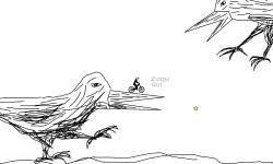 birds sketch