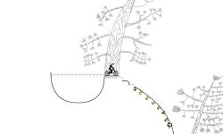 Nature track 2