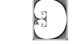 Fibonacci Trip