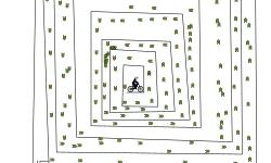 Maze auto