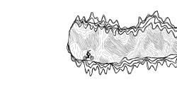Track N.43