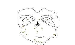 The Mask (auto)