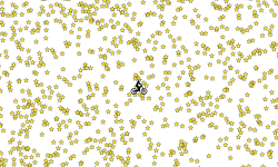 50000 Star Heli