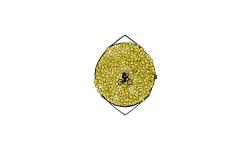 BLOb Circle
