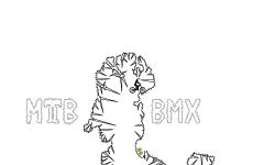 MTB BMX Auto 1