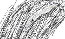 Sketch Trial