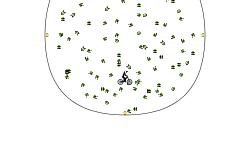 Boost Circle (Short)