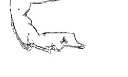 Cave Auto
