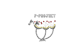 P-Project 1
