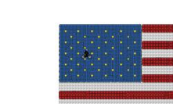 U.S.A Flag (Desc)