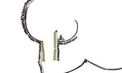 yan jump bomb map