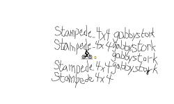 Stampede_4x4 gabbystork