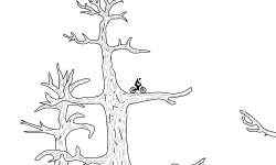 tree track