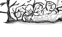 Twisted Thicket